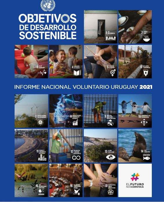 Informe Nacional Voluntario 2021- Presidencia de la Republica- OPP